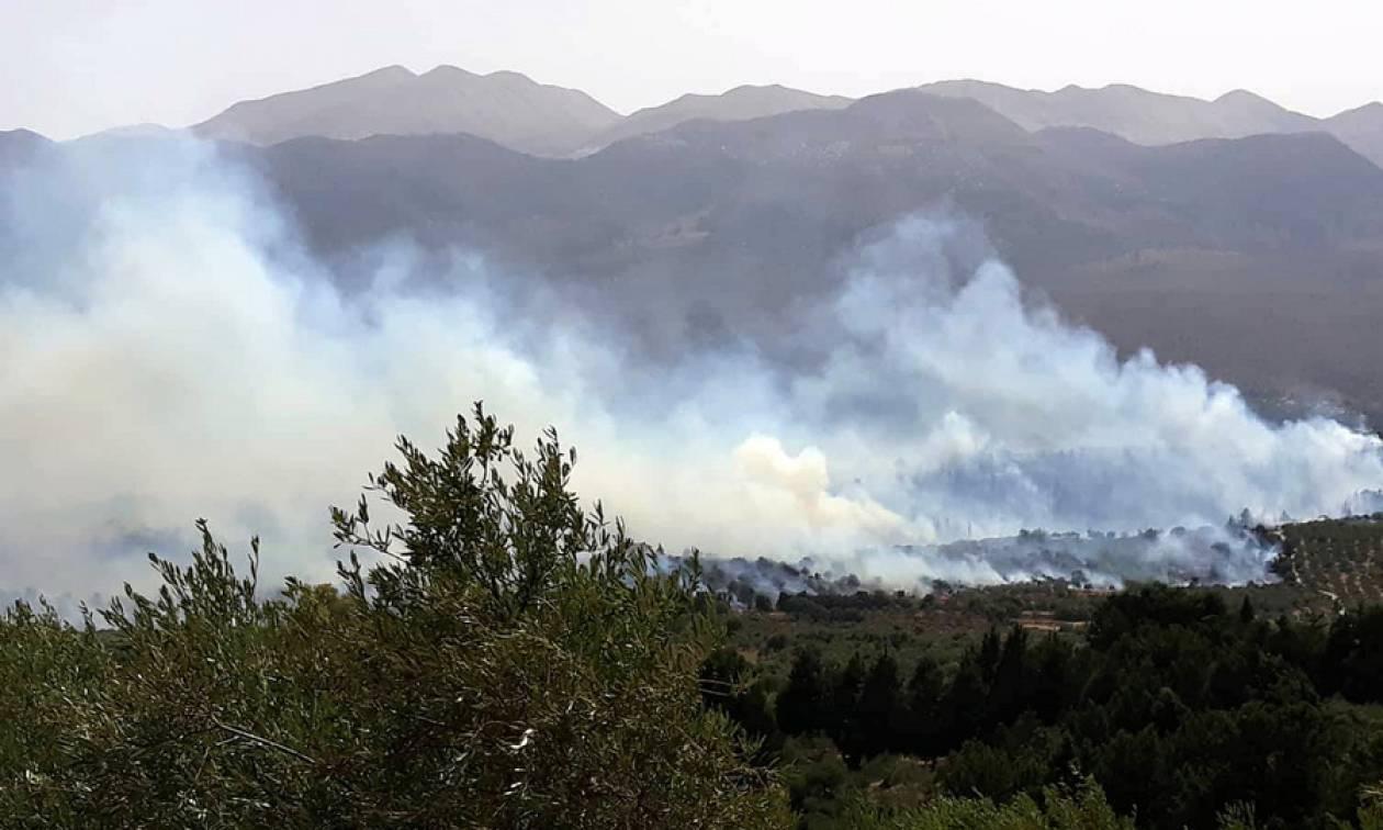 Φωτιά Χανιά: Μεγάλη πυρκαγιά στον Αποκόρωνα - Στις αυλές των σπιτιών έφτασαν οι φλόγες (Pics+Vid)