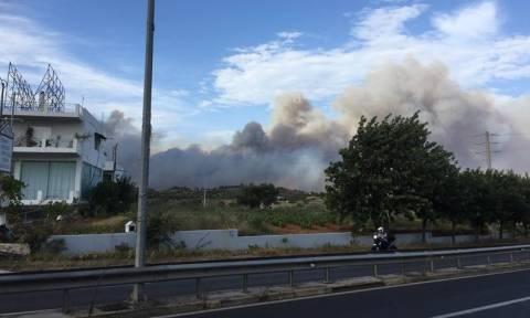 Καταστροφική φωτιά στην Πεντέλη: Εκκενώνονται κατασκηνώσεις