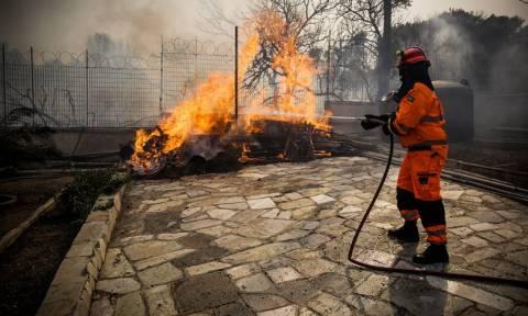 Φωτιά ΤΩΡΑ - Δήμαρχος Ραφήνας: «Υπάρχουν νεκροί από την πυρκαγιά»