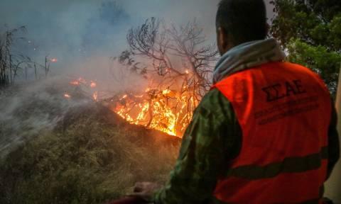 Φωτιά τώρα - Πυροσβεστική: Έξι τραυματίες – Αίτημα για διεθνή βοήθεια