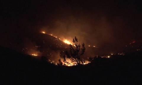 Φωτιά Αλεξανδρούπολη: Συνεχίζεται η μάχη με τις φλόγες στην περιοχή της Λευκίμης
