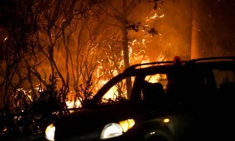 Φωτιά ΤΩΡΑ: Πρόεδρος Εργαζομένων ΕΚΑΒ: Δύο νεκροί από τις πυρκαγιές