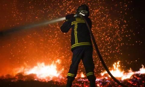 Φωτιά ΤΩΡΑ - Εθνική τραγωδία: Πληροφορίες για οκτώ νεκρούς από τις πυρκαγιές στην Αττική
