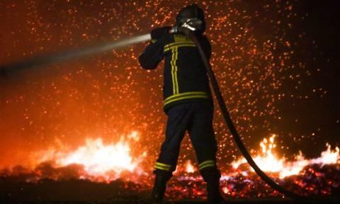 Φωτιά ΤΩΡΑ Τζανακόπουλος: Πάνω από 20 οι νεκροί από τις φονικές πυρκαγιές στην Αττική