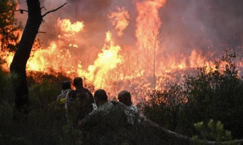 Φωτιά ΤΩΡΑ: Σε πλήρη εξέλιξη η πυρκαγιά στις περιοχές Ζεμενό και Θροφάρι στην Κόρινθο (χάρτης)