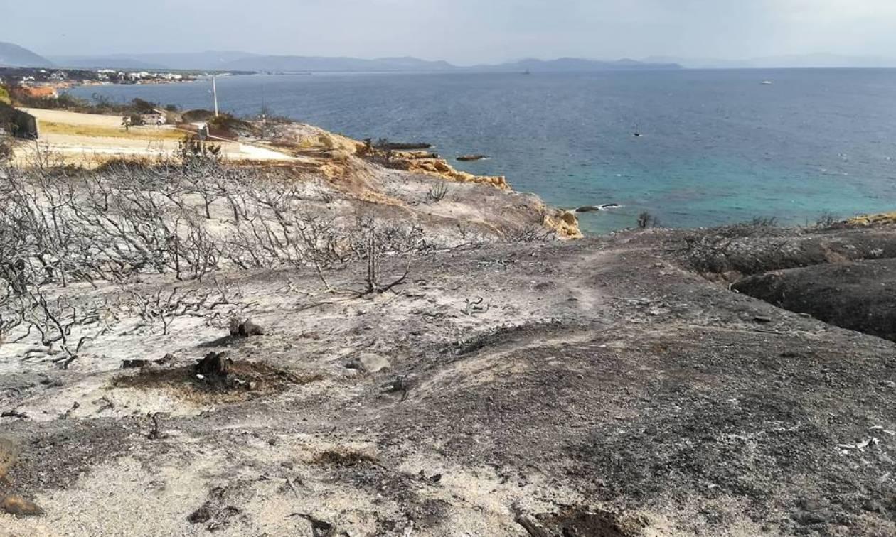 Φωτιά ΤΩΡΑ: «Κρανίου τόπος» ο Άγιος Νικόλαος στην Ραφήνα (vid-pics)