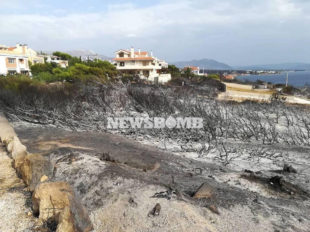 Φωτιά ΤΩΡΑ: «Κρανίου τόπος» ο Άγιος Νικόλαος στην Ραφήνα (vid)