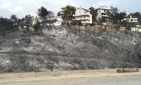 Πυροσβεστική: Στους 49 οι νεκροί από τις φονικές φωτιές στην Αττική (vid)