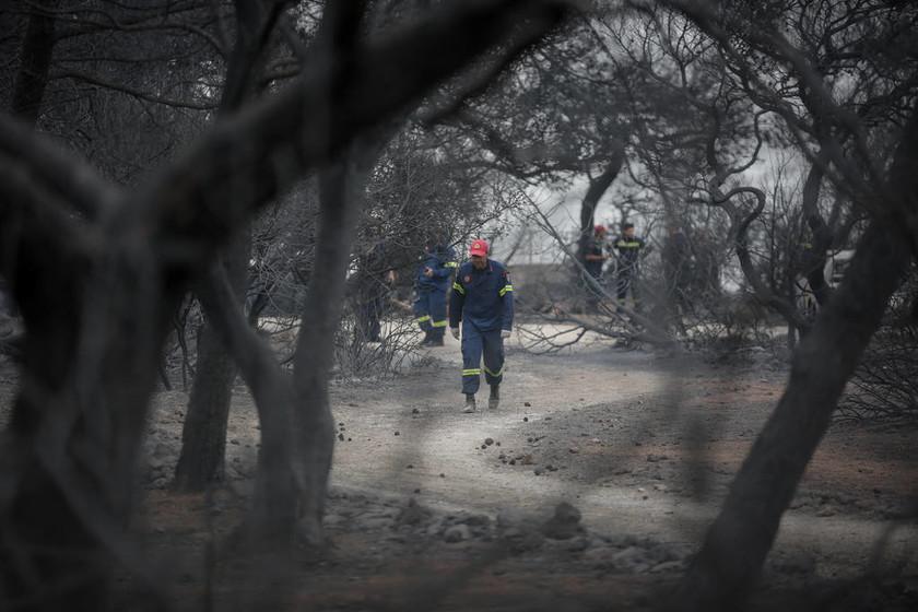 Φωτιά: Η σοκαριστική στιγμή που αντικρίζουν τους 26 νεκρούς αγκαλιασμένους στο Κόκκινο Λιμανάκι
