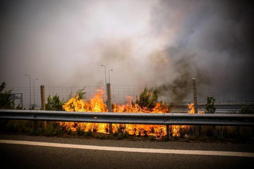 Φωτιές Αττική: Σκληρή μάχη με τις φλόγες σε Καλλιτεχνούπολη και Κινέτα