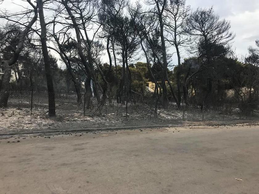 Φωτιά ΤΩΡΑ: Εκκενώνονται οικισμοί στους Αγίους Θεοδώρους - Δύσκολη η κατάσταση στην Κινέτα