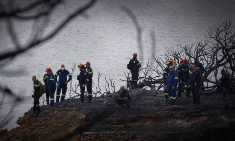 Число погибших в Греции в результате пожаров достигло 74 человек