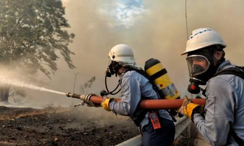 Φωτιά Αττική: Σε κατασκήνωση πληγέντων τα φαγητά της δεξίωσης για την Αποκατάσταση της Δημοκρατίας