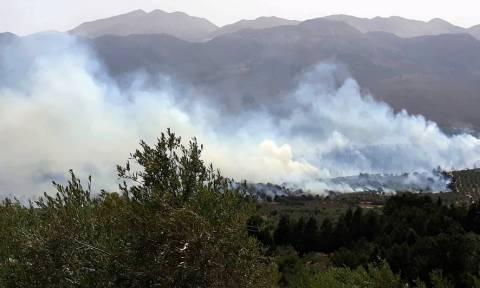 Φωτιά Χανιά: Αρχίζει η καταγραφή των ζημιών από τη μεγάλη πυρκαγιά στον Κακόπετρο