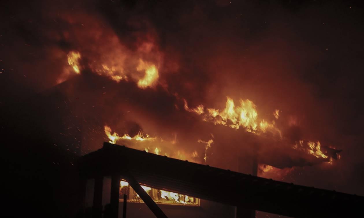 Φωτιά Αττική - Γερμανικός Τύπος: «Μετά τις φλόγες έρχεται η οργή»