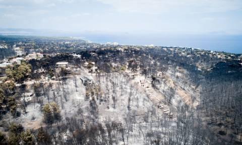 Φωτιά: Δείτε από τον χάρτη της Google πού υπάρχει φωτιά και πού μπορείτε να βρείτε καταφύγια