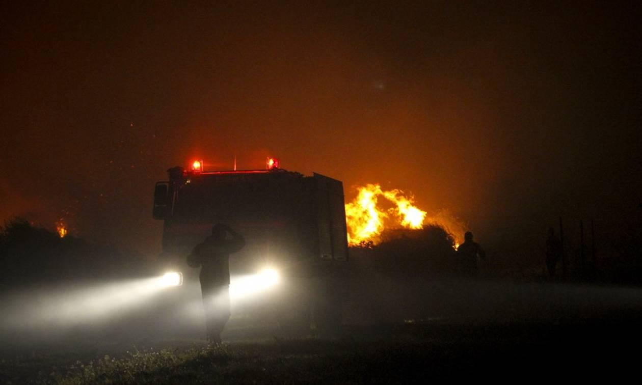 Φωτιά ΤΩΡΑ: Υπό πλήρη έλεγχο η πυρκαγιά στην περιοχή Νέας Μάκρης (χάρτης)