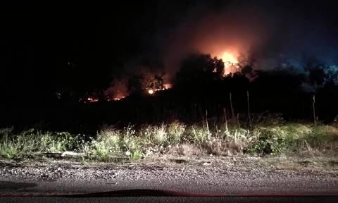Φωτιά ΤΩΡΑ στη Ζάκυνθο: Στις φλόγες η Λιθακιά (χάρτης+pics)