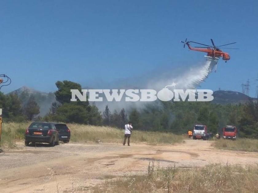 ΔΕΗ: Μέσα στο Σαββατοκύριακο θα αποκατασταθούν οι ζημιές από τις φωτιές