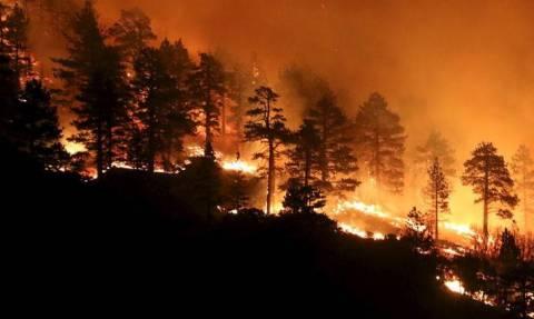 Δασικές πυρκαγιές σαρώνουν τις ΗΠΑ - Χιλιάδες άνθρωποι εγκατέλειψαν τα σπίτια τους