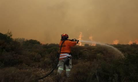Φωτιές Αττική - Ανείπωτη τραγωδία: Παιδί πυροσβέστη το μόλις 6 μηνών βρέφος που «χάθηκε» στις φλόγες