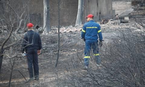 Φωτιά Μάτι: Κρίσιμες ώρες για τους τραυματίες – Αγωνία για 4 παιδιά