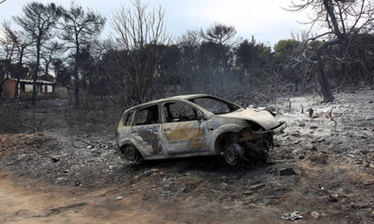 Death toll from fires hits 88