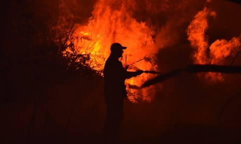 Φωτιά ΤΩΡΑ: Και δεύτερη πυρκαγιά μαίνεται στη Ζάκυνθο