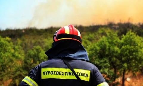 Υψηλός ο κίνδυνος πυρκαγιάς σήμερα - Δείτε σε ποιες περιοχές (χάρτης)