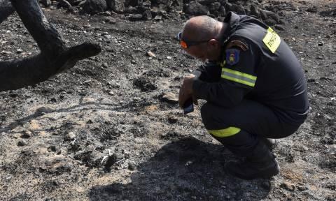 Φωτιά στο Μάτι: Θρίλερ με τον αριθμό νεκρών και αγνοουμένων