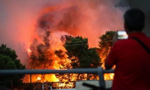 Φωτιά - Κατατέθηκε η πρώτη μήνυση για τη φονική πυρκαγιά στο Μάτι