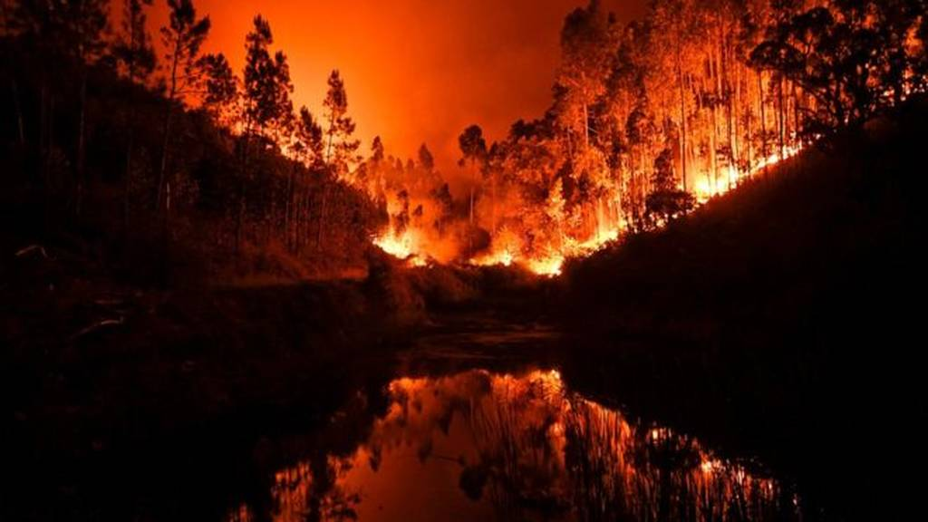 Φωτιά: Άνευ προηγουμένου κινητοποίηση για τις πυρκαγιές στην Πορτογαλία