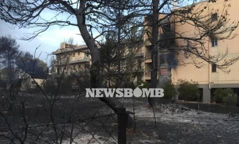 Φωτιά: Τα μέτρα για τους πυρόπληκτους μαθητές και φοιτητές