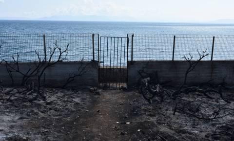 Φωτιές Αττική: Αίτημα Κοντονή να στραφούν οι έρευνες και στα αυθαίρετα