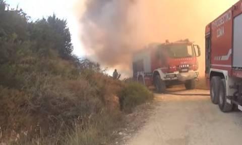 Ζάκυνθος: Υπό μερικό έλεγχο η πυρκαγιά στο Καλαμάκι (vid)