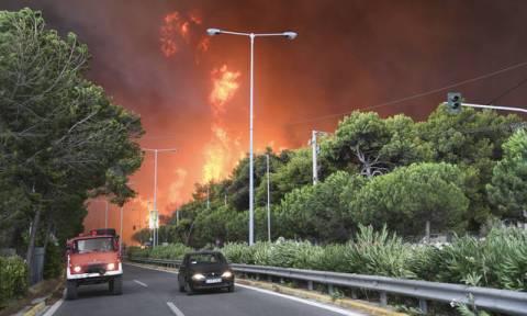 Δασοφύλακες: Η μάχη χάθηκε στην Πεντέλη - Υπάρχουν ευθύνες για την τραγωδία