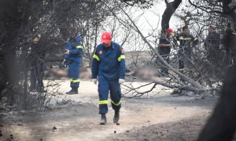 Φωτιά Μάτι: Συνεχίζονται οι καταθέσεις στην εισαγγελέα για τις φονικές πυρκαγιές
