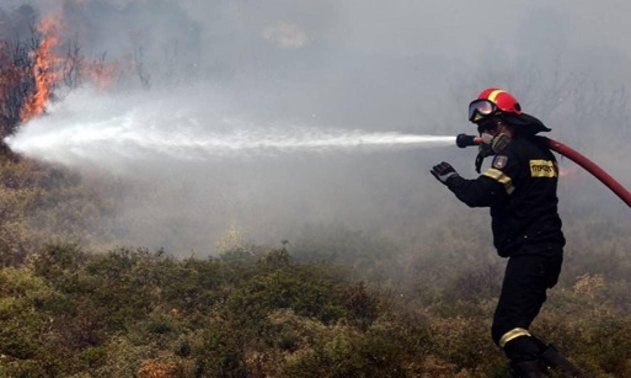 Ο χάρτης πρόβλεψης κινδύνου πυρκαγιάς για αύριο (02/08)