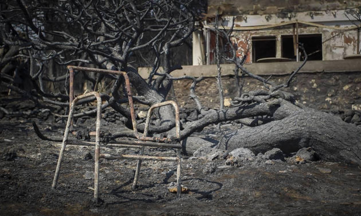 Φάμελλος: Καταπατημένη δασική έκταση το οικόπεδο του θανάτου στο Μάτι