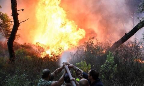 Φωτιά: Μεγάλη πυρκαγιά στη Ρόδο