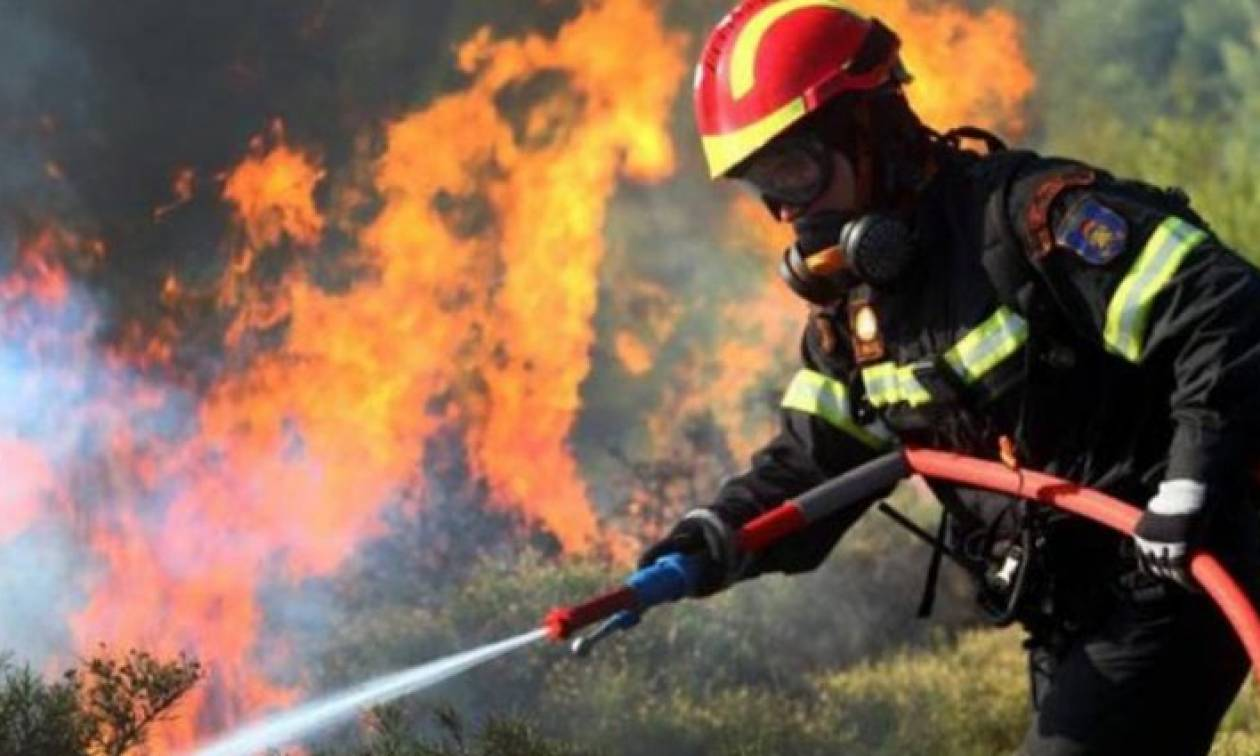 Υψηλός κίνδυνος πυρκαγιάς την Παρασκευή (03/08)  - Δείτε σε ποιες περιοχές