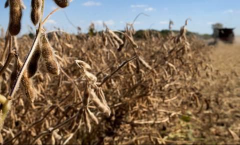 Πότε και πώς θα αποζημιωθούν οι αγρότες της Κορινθίας από φωτιές και πλημμύρες