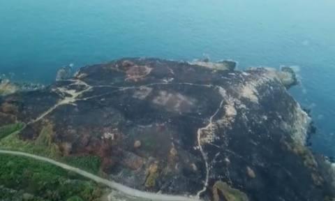 Ιρλανδία: Η φωτιά αποκάλυψε μήνυμα του Β' Παγκοσμίου Πολέμου! (vid)