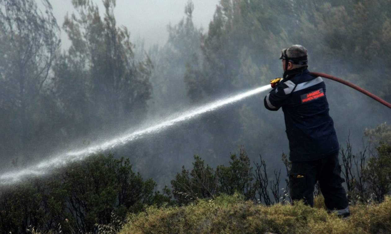 Υψηλός ο κίνδυνος εκδήλωσης πυρκαγιάς σήμερα  - Δείτε σε ποιες περιοχές (χάρτης)
