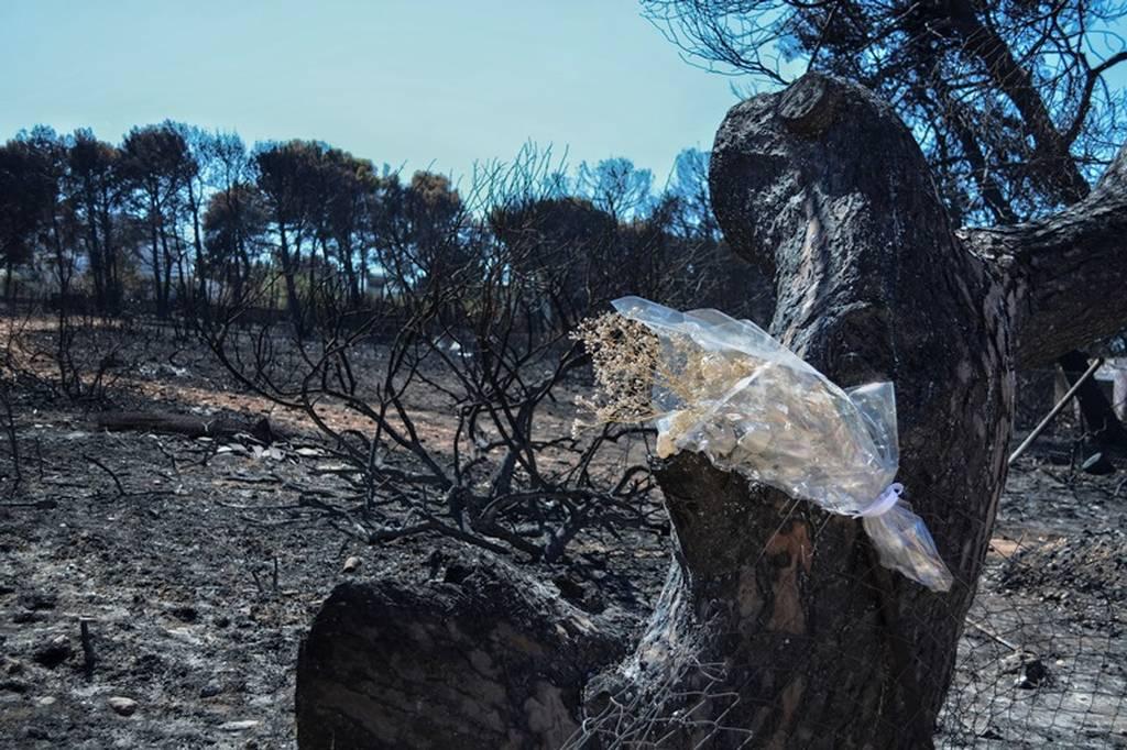 ΕΚΤΑΚΤΟ – Φονικές πυρκαγιές: Η ανακοίνωση της Πυροσβεστικής για τον αριθμό των νεκρών
