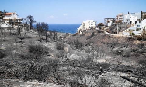 ΟΤΕ για φωτιές στην Αττική: Σε ένα μήνα η αποκατάσταση των ζημιών