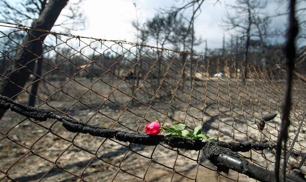 Φωτιά Μάτι – Αδιανόητο: Έκλεβαν τρόφιμα που συγκεντρώνονται για τους πυρόπληκτους