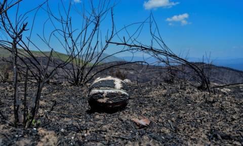 Φωτιά Μάτι: Στους 93 οι νεκροί - Κατέληξε μια γυναίκα στο νοσοκομείο