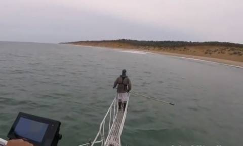 Τρόμος στο νερό! Πήγε να τον αρπάξει λευκός καρχαρίας και σώθηκε την τελευταία στιγμή (vid)