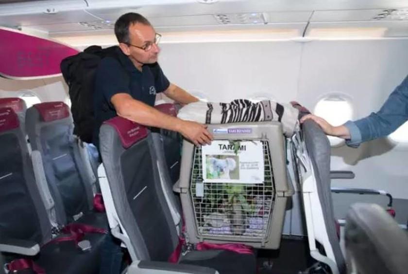 Έκπληξη για τους επιβάτες της πτήσης Ντίσελντορφ - Εδιμβούργο